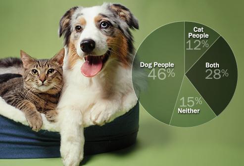 Какое домашнее животное лучше завести?
