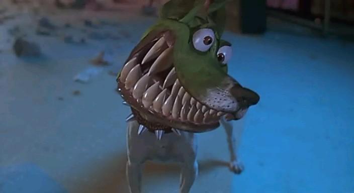 Порода собаки в фильме маска