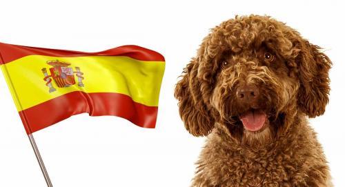 Испанские клички